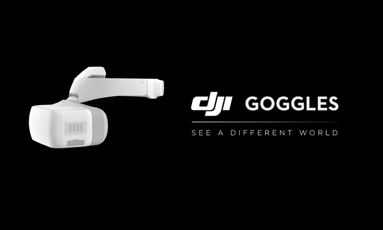 DJI - Goggles - See the World Take Flight